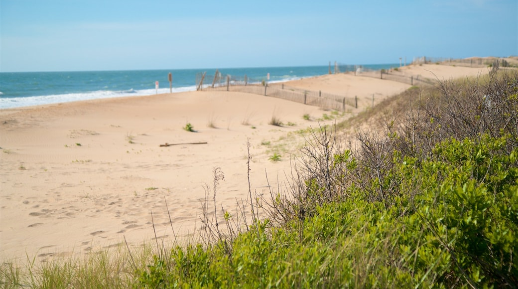 Bethany Beach featuring general coastal views and a beach