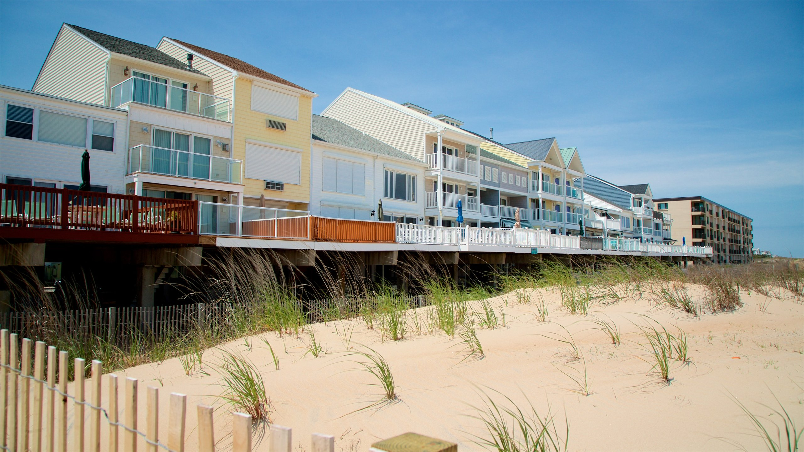Top 10 Pet Friendly Hotels In Fenwick Island De Dog Cat