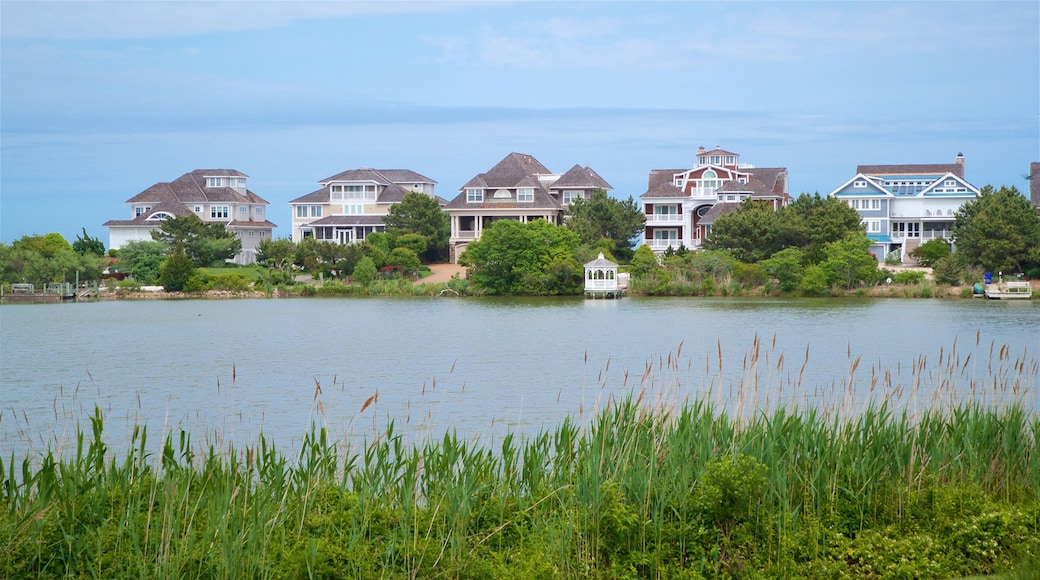 Delaware showing a lake or waterhole