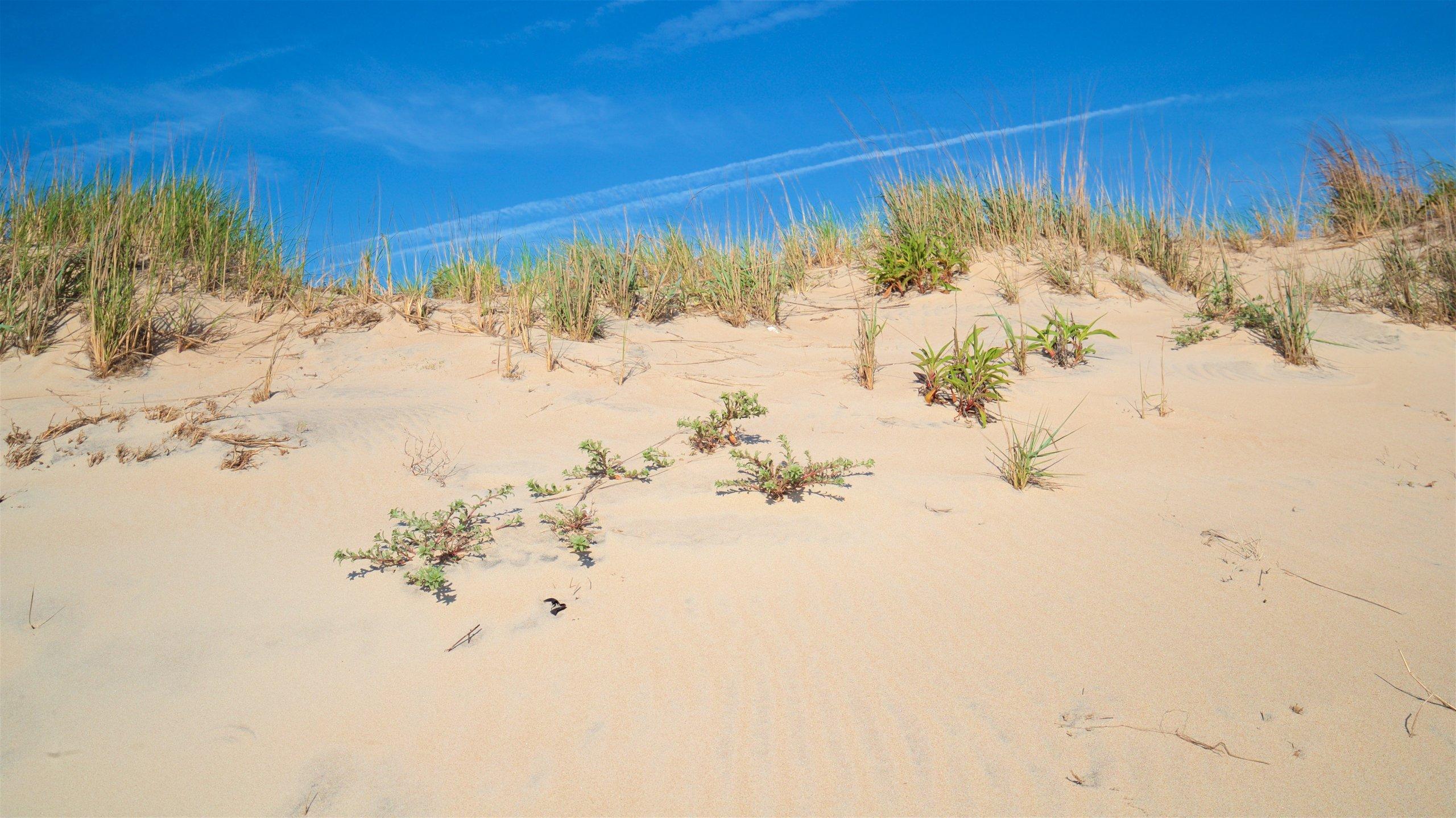 Fenwick Island Beach, Fenwick Island, Delaware, United States of America