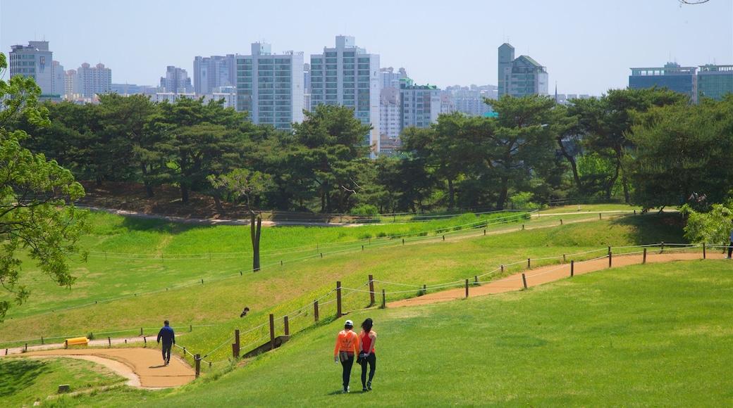 สวนโอลิมปิก แสดง เมือง, วิวทิวทัศน์ และ อาคารสูง