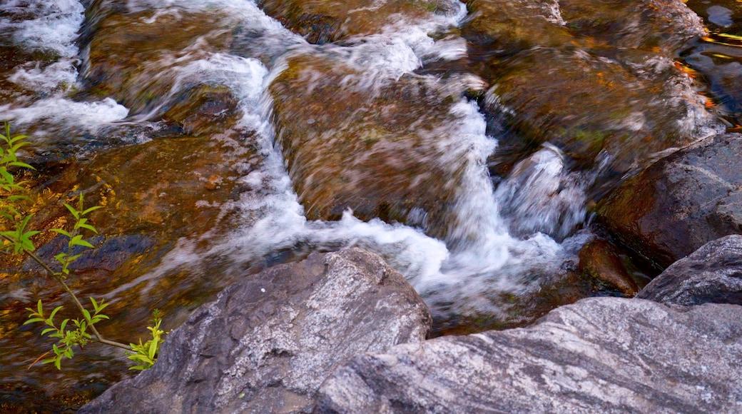 ชองเกชอน เนื้อเรื่องที่ แม่น้ำหรือลำธาร