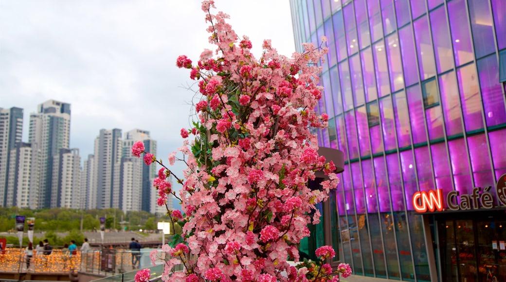 瑞草區 呈现出 城市, 花朵 和 摩天大樓