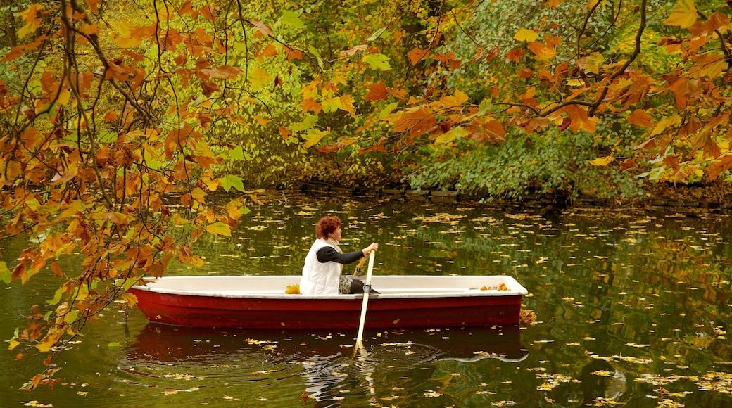 Tiergarten mit einem See oder Wasserstelle, Kajak- oder Kanufahren und Herbstblätter