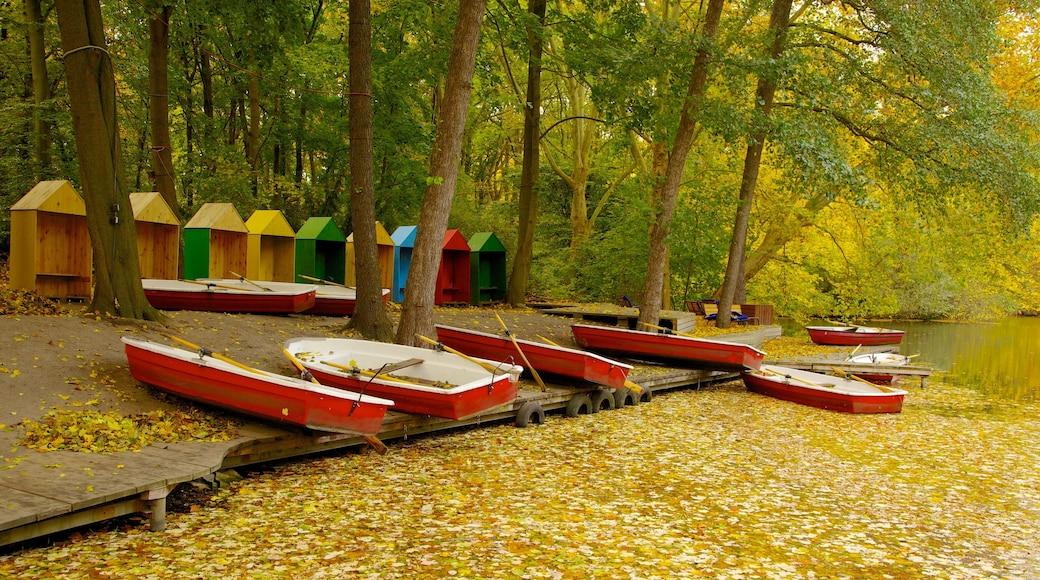 Tiergarten mit einem Park, Herbstblätter und Wälder