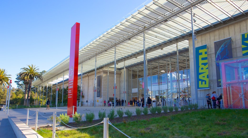 California Academy of Sciences showing a city