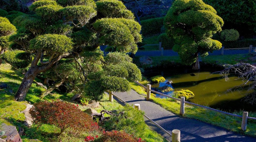Japanese Tea Garden showing landscape views and a park