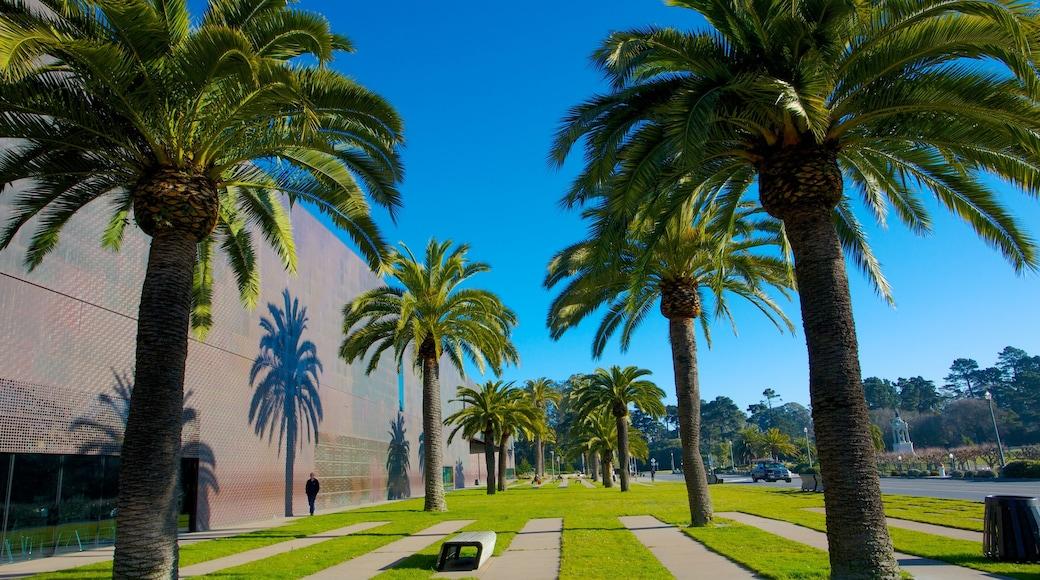 Museo De Young que incluye vistas panorámicas y un jardín