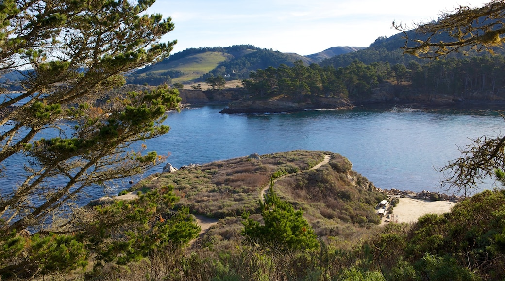 Point Lobos State Reserve which includes forests, landscape views and a lake or waterhole