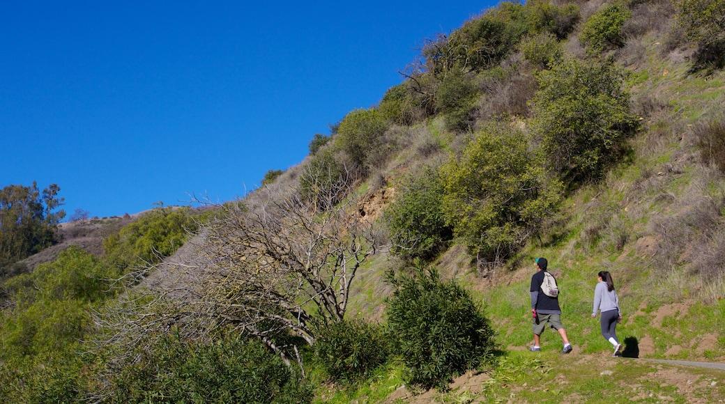 Vale do Silício que inclui escalada ou caminhada, paisagem e cenas tranquilas