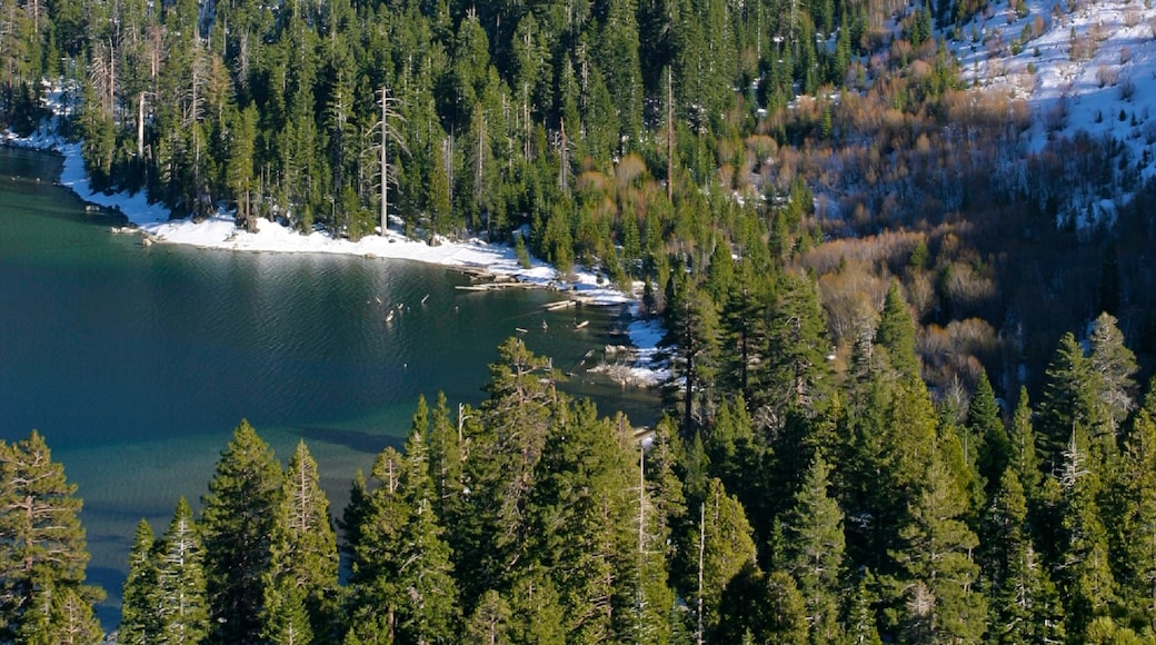Lake Tahoe which includes a lake or waterhole, forests and landscape views