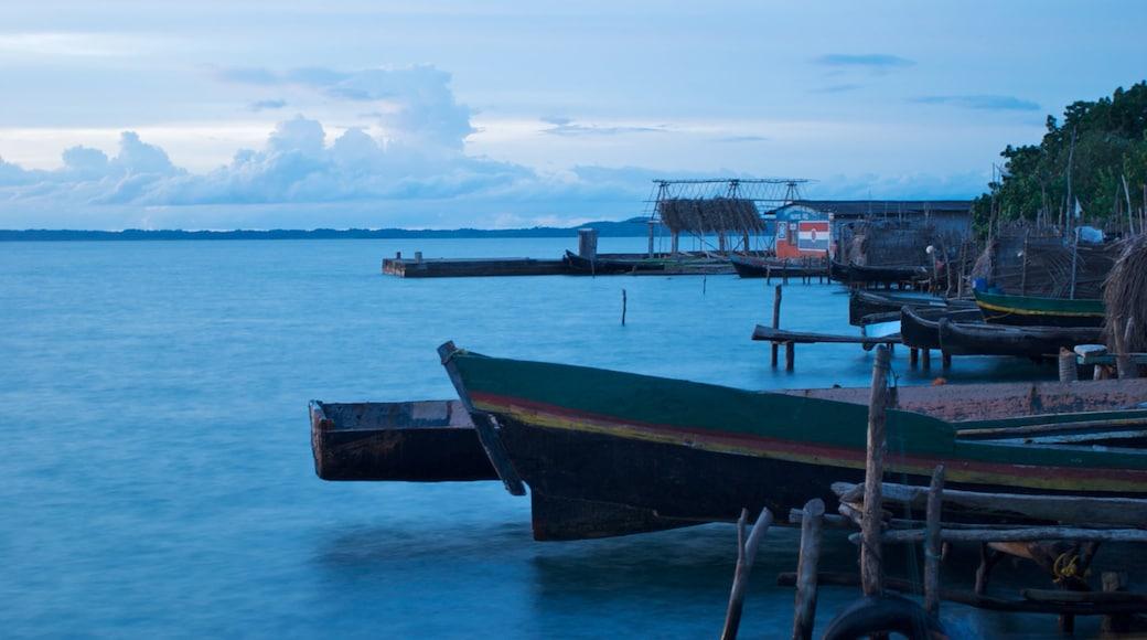파나마 을 보여주는 보트 타기, 아열대 풍경 과 항구 또는 항만