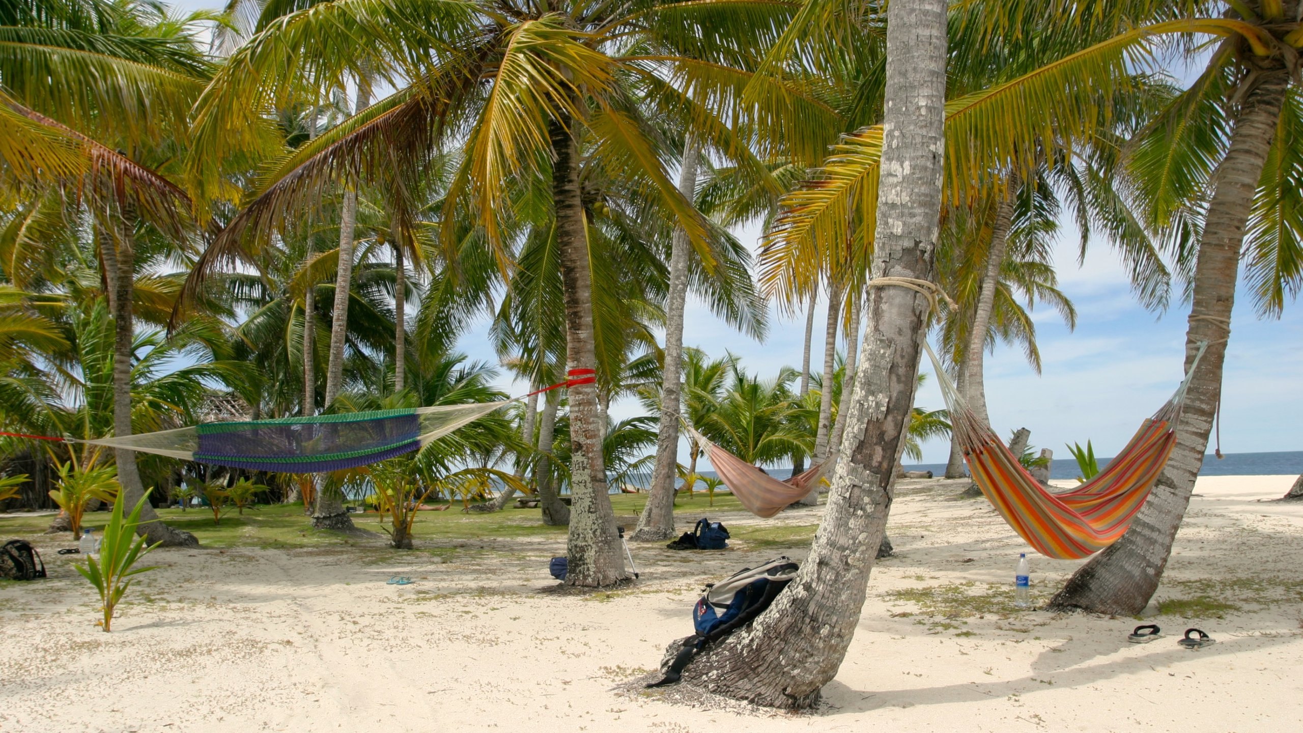 10 Best All Inclusive Resorts In Panama 139 Deals On -2167