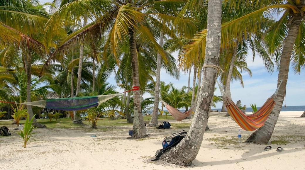 파나마 을 특징 아열대 풍경, 모래 해변 과 풍경