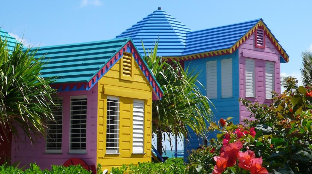 Nassau welches beinhaltet Haus und tropische Szenerien