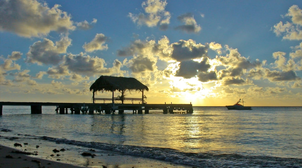 Trinidad showing tropical scenes, general coastal views and a beach