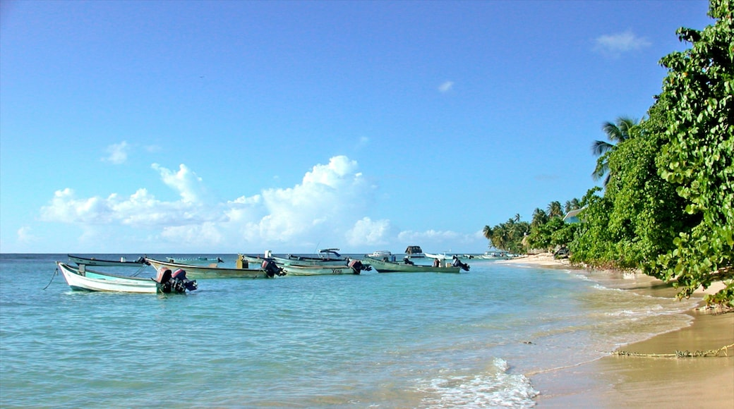 Trinidad showing a beach, boating and landscape views