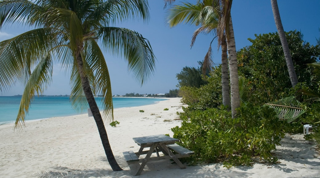 Cayman Islands which includes a coastal town, a beach and tropical scenes
