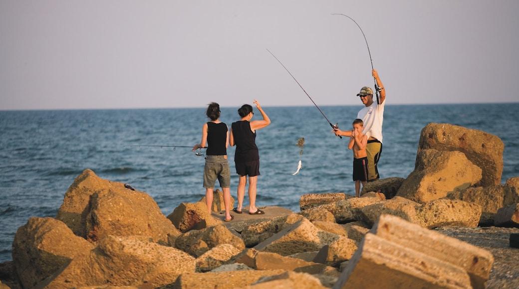 Galveston showing rugged coastline, general coastal views and fishing