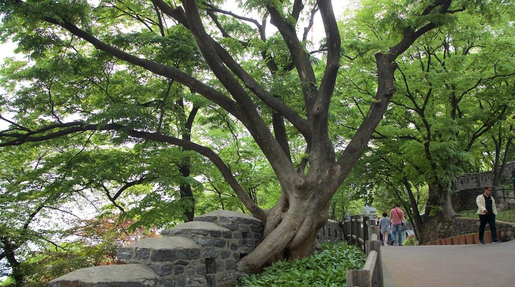 Namsan Park which includes a garden