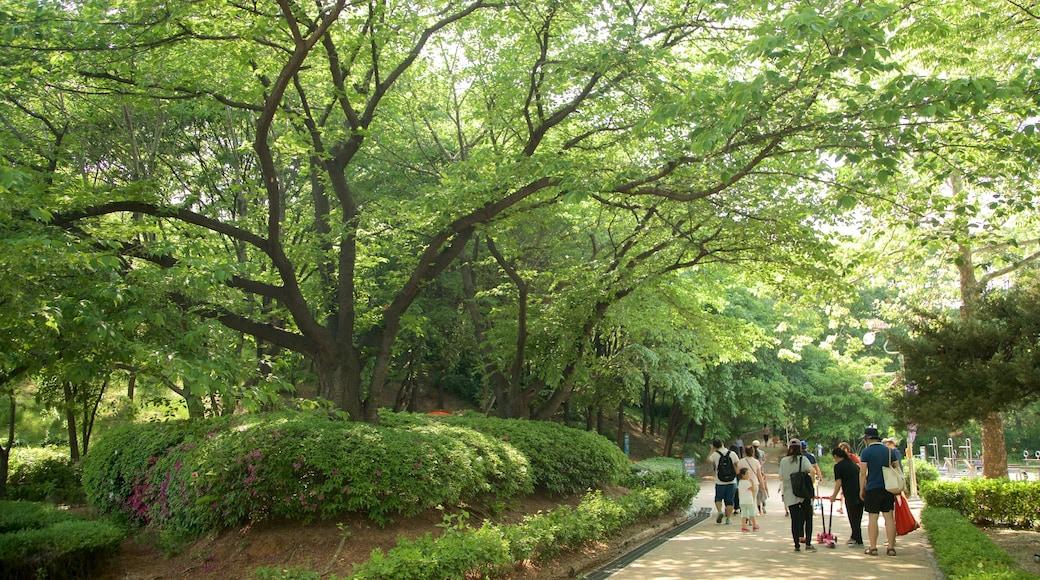 สวน Yongsan Park แสดง สวนสาธารณะ ตลอดจน คนกลุ่มเล็ก