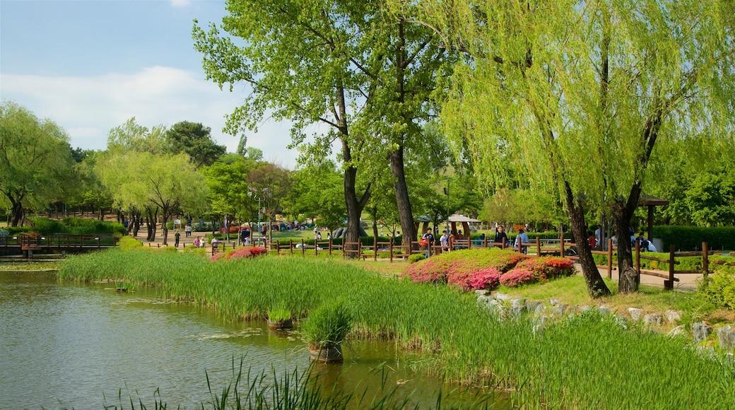 สวน Yongsan Park แสดง บ่อน้ำ, สวนสาธารณะ และ ดอกไม้ป่า
