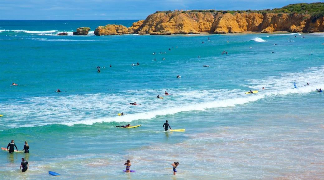 Great Ocean Road showing rocky coastline, surf and general coastal views