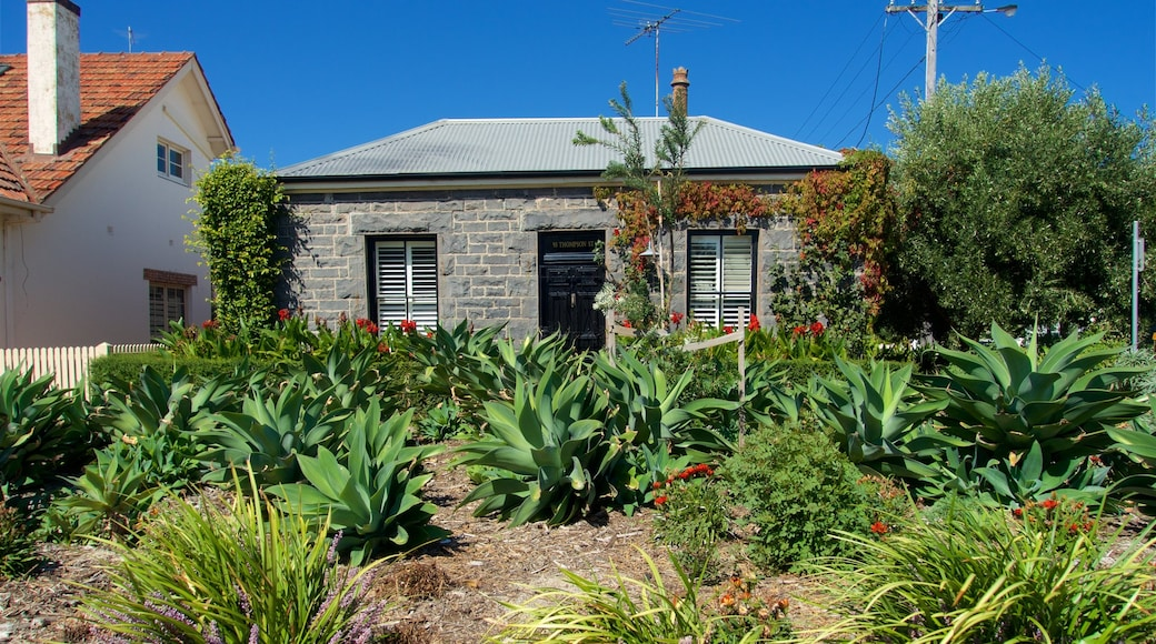 Williamstown featuring a garden, wild flowers and a house