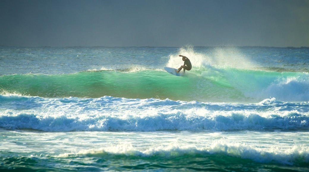 New South Wales showing a sunset, surfing and surf