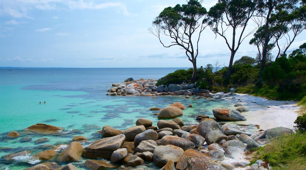 Tasmania showing rocky coastline and general coastal views