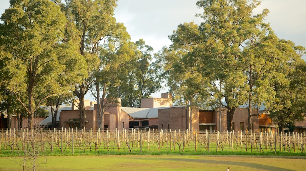 Hunter Valley featuring farmland and landscape views