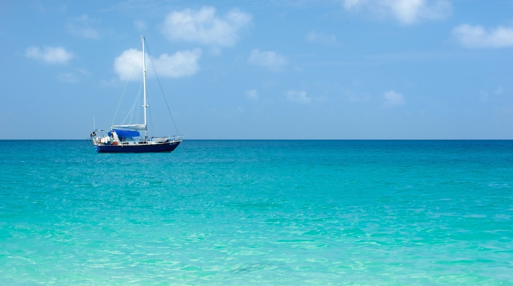 Whitsunday Islands showing general coastal views, boating and tropical scenes