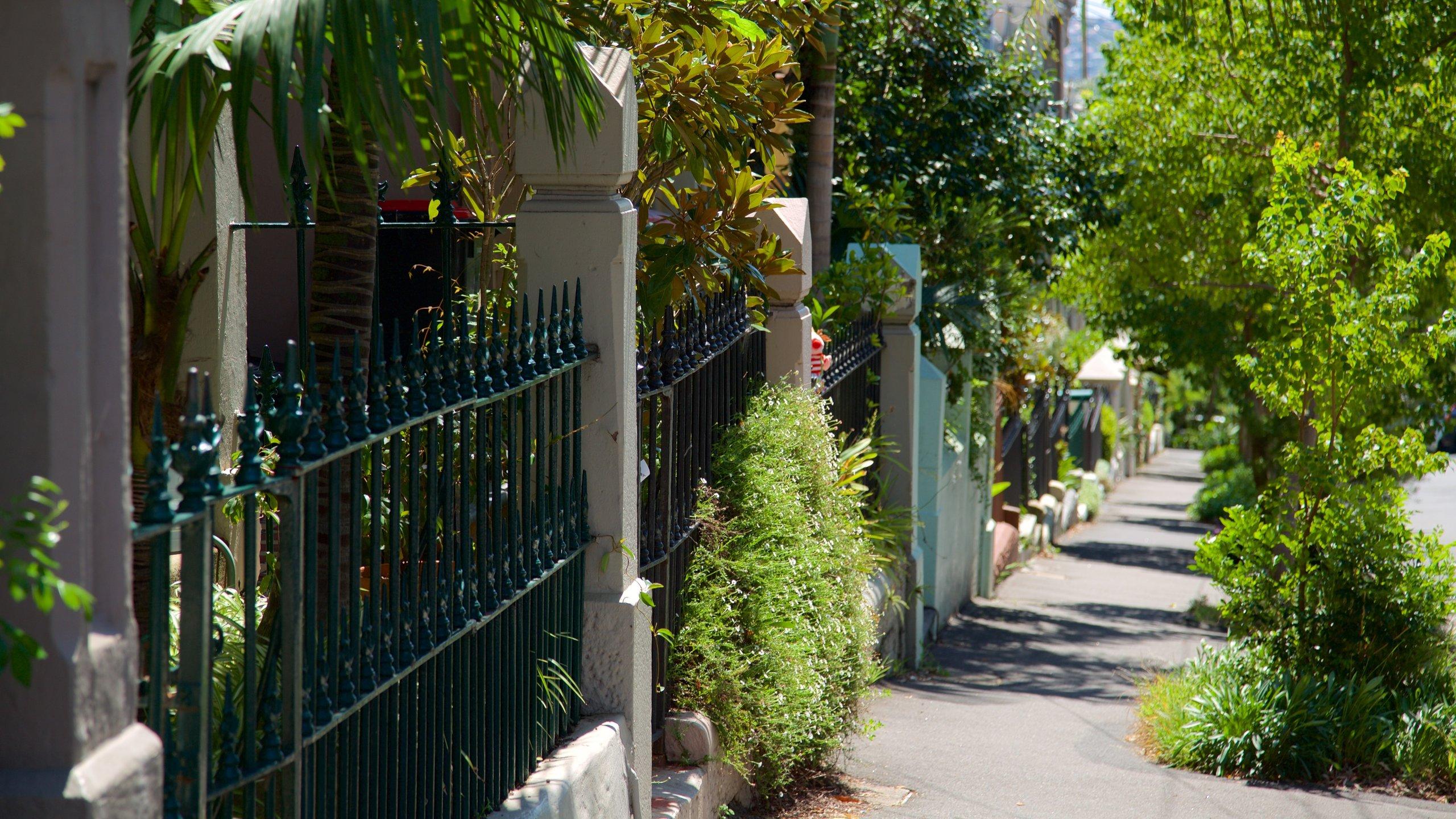 Paddington, Sydney, New South Wales, Australia