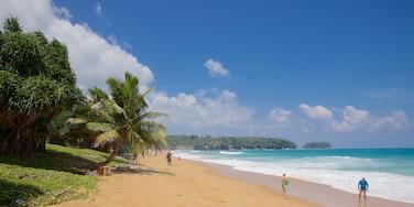 卡隆海灘 其中包括 綜覽海岸風景, 熱帶風景 和 海灘