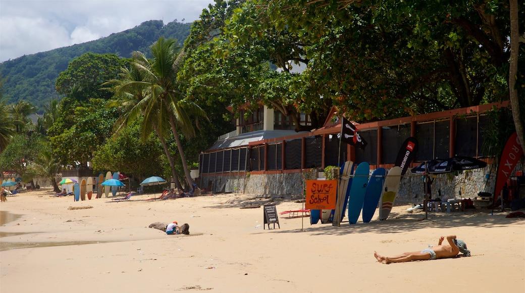 Kata Beach showing a beach, tropical scenes and general coastal views