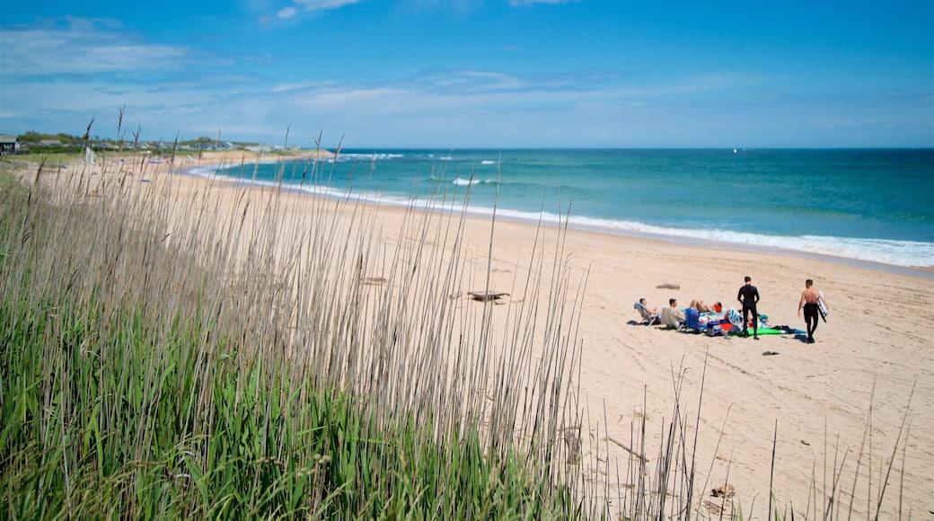 Ditch Plains Beach qui includes plage et vues littorales aussi bien que petit groupe de personnes