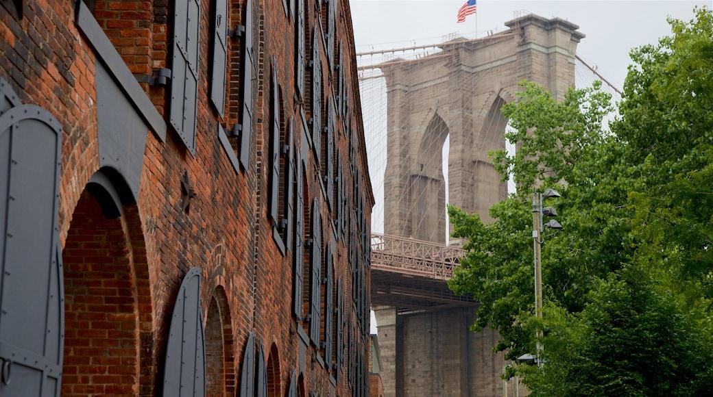Downtown Brooklyn que incluye un puente y elementos patrimoniales