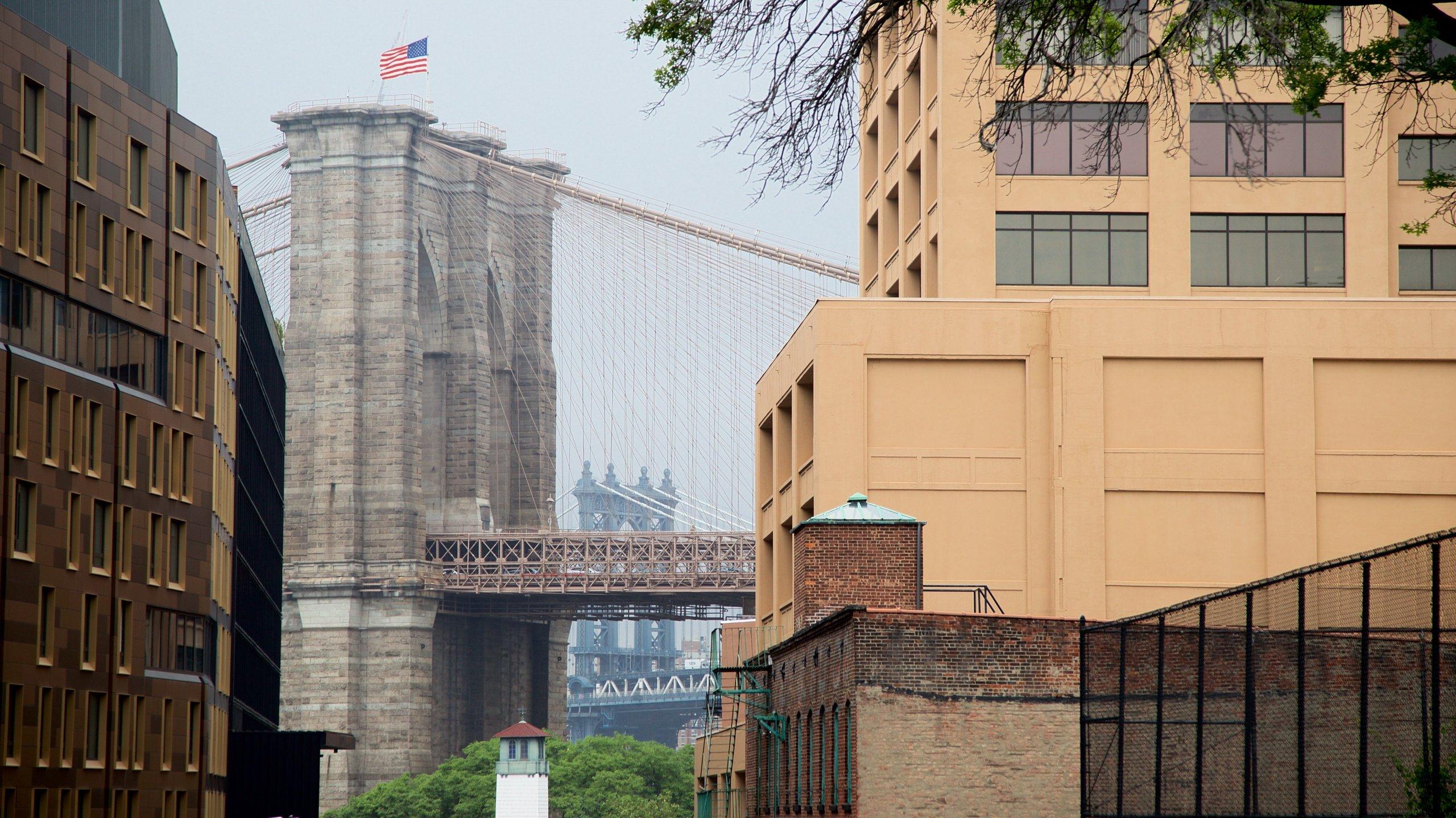 Downtown Brooklyn caratteristiche di ponte e città