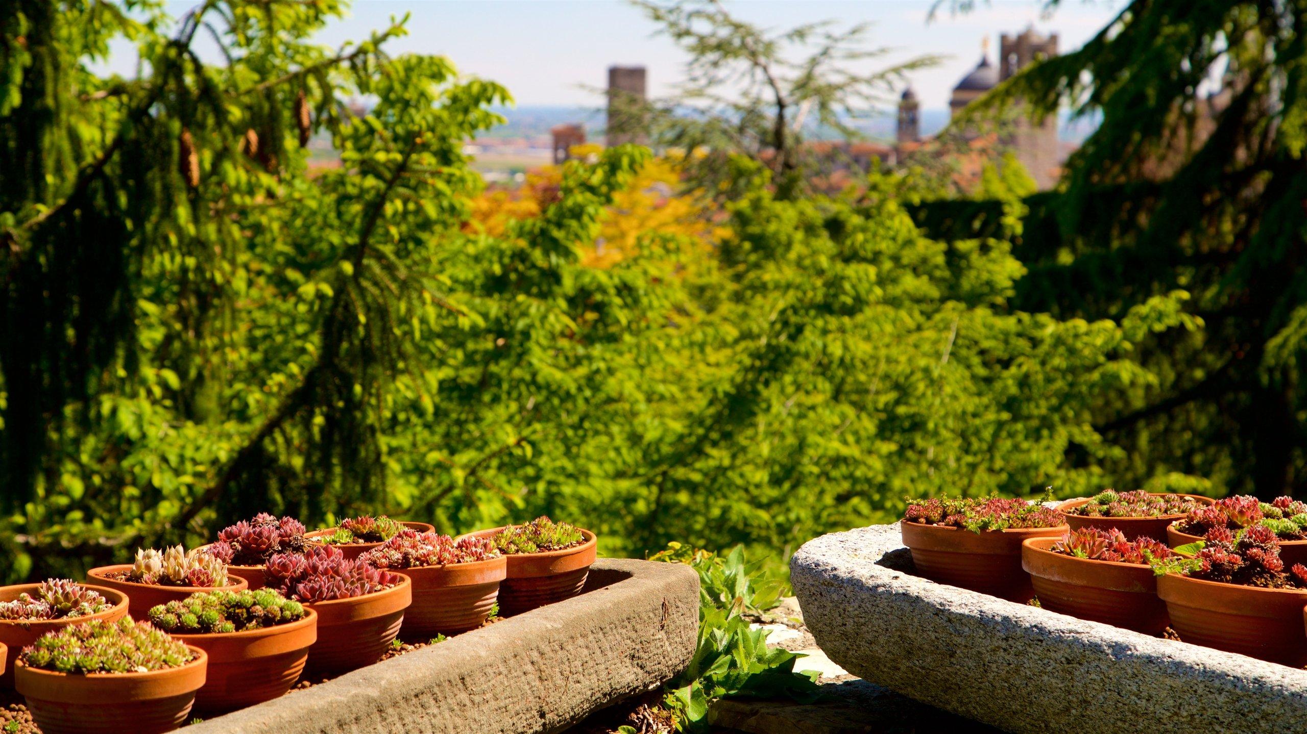 Bergamo Botanical Garden, Bergamo, Lombardy, Italy