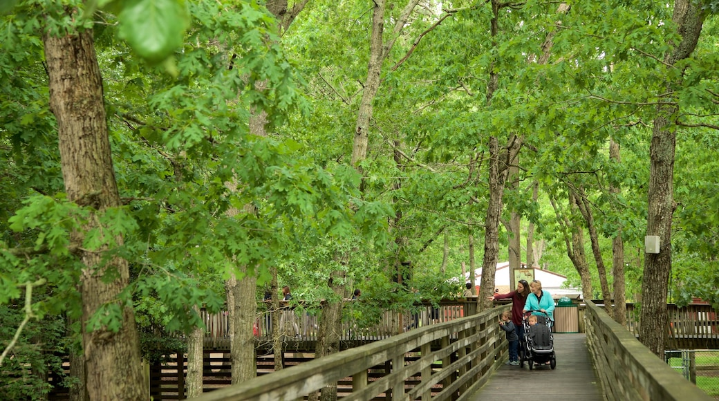 Cape May County Zoo featuring a garden as well as a family