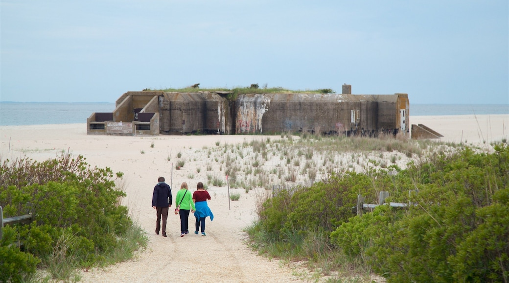 Cape May Point State Park featuring general coastal views, heritage elements and military items
