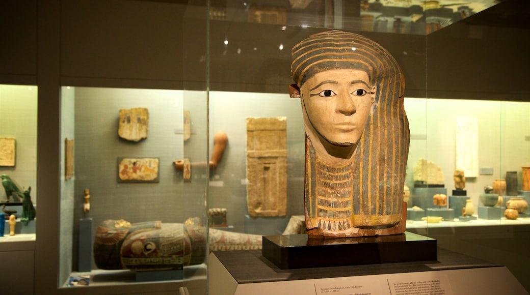 Princeton University Art Museum que inclui elementos de patrimônio e vistas internas