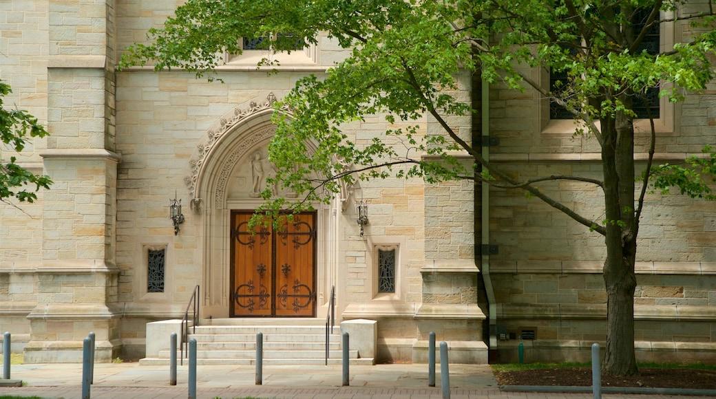 Princeton University showing heritage elements