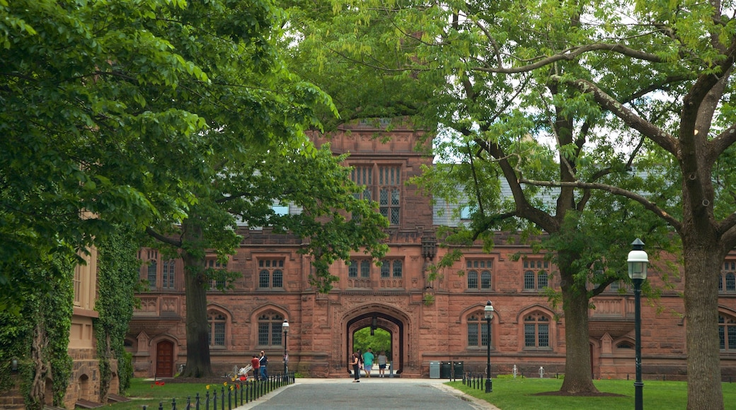Princeton University showing heritage elements and a park
