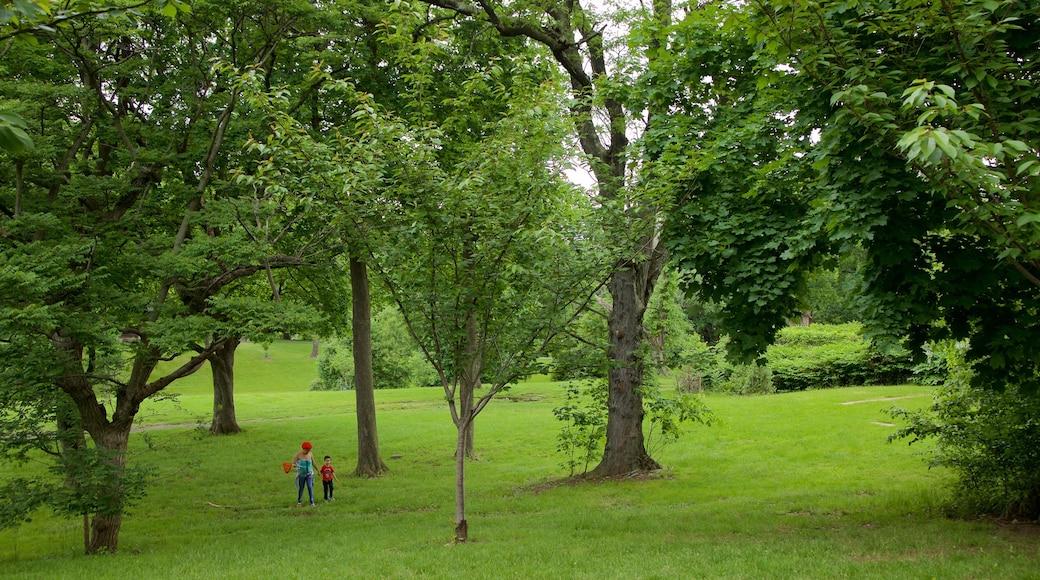브랜치 브룩 공원 이 포함 공원 뿐만 아니라 가족
