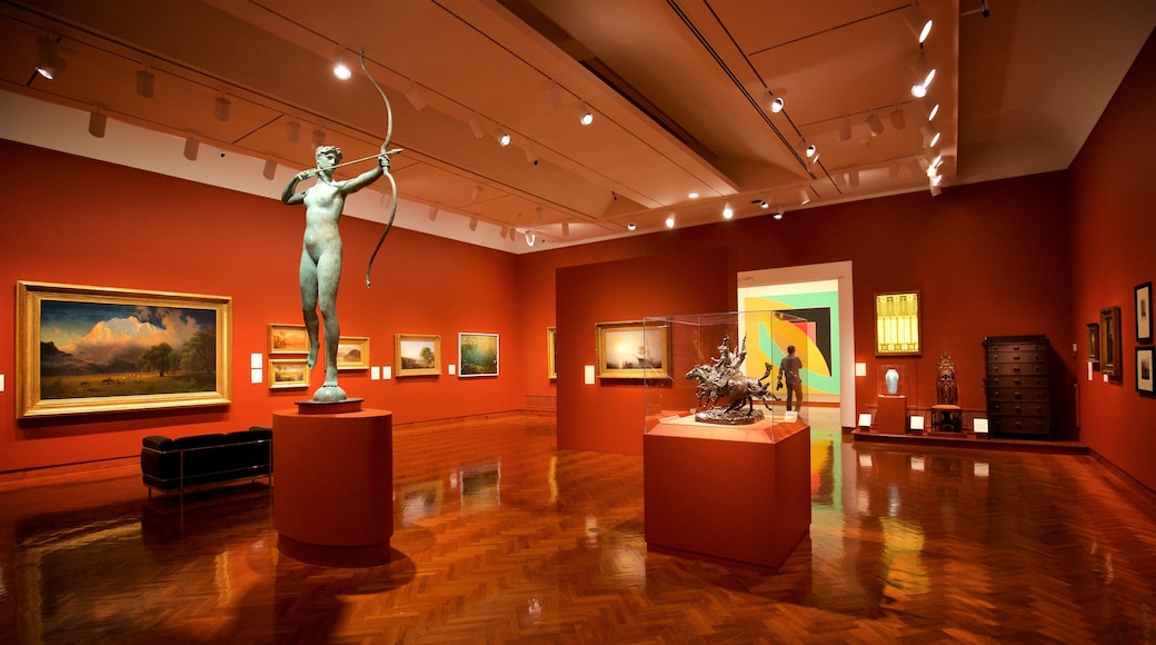 Princeton University Art Museum mostrando vistas internas e arte