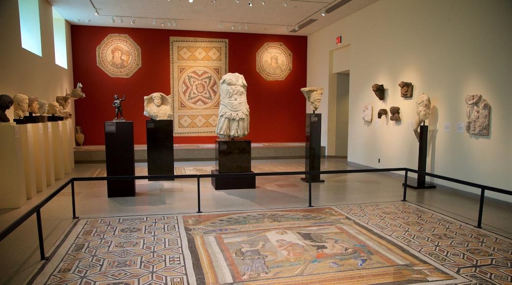 Princeton University Art Museum mostrando arte, vistas internas e elementos de patrimônio