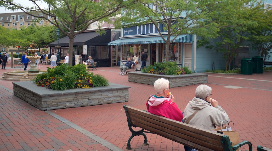 Washington Street Mall featuring a small town or village and flowers as well as a couple