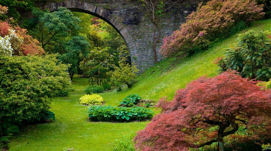 Villa Taranto Botanical Garden showing a park and wild flowers