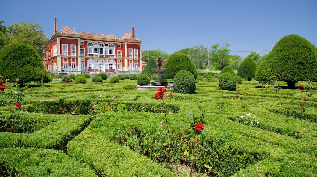 Palace of the Marquises showing a house, a garden and heritage elements
